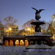 Stock Photo: BethesdFountain Central Park after snow storm Nemo