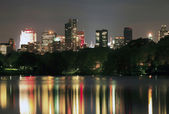 Manhattan from Central Park — Stock Photo