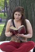 Woman reading Bible — Stock Photo