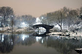 Central Park NYC in winter at night — ストック写真
