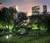 Central park nueva york — Foto de Stock