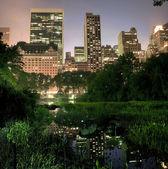 Central park'a nyc — Stok fotoğraf