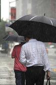In rain — Stock Photo