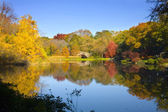 Central park new york — Stockfoto
