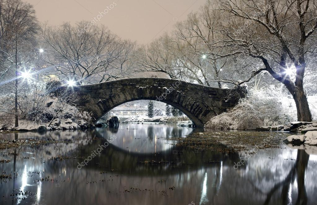 Central park nyc at night in winter stock photo for Things to do in nyc during winter
