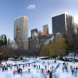 Central Park in winter — Stock Photo