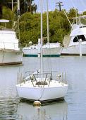 Sailboat — Stock Photo