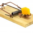 Mouse Trap — Stock Photo #12346472