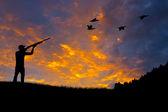 Bird Hunting Silhouette — Stock Photo