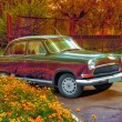 Retro car near a flowerbed — Stock Photo