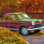 Retro car near a flowerbed — Stock Photo