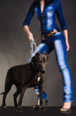 Dog on a chain that keeps a woman in denim clothes — Stock Photo