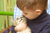 Cute boy and kitten looking at each other's eyes — Stock Photo