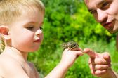 Father and son are considering frog — Stock Photo
