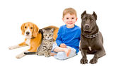 Boy, cat and two dogs sitting together — Stockfoto