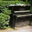 Piano in bushes — Stock Photo #12171028