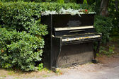 Piano in the bushes — Stock Photo