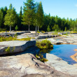 Stock Photo: Karelia, Belomorsk, petroglyphs