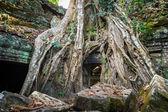 Ta-baile templo, angkor, camboja — Fotografia Stock