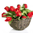 Beautiful red tulips in basket isolated on white — Stock Photo