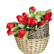 Beautiful red tulips in basket isolated on white — Stock Photo #23727331