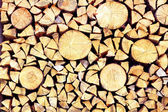 Fire wood background texture — Stock Photo
