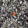Polished multicolored stones washed ashore on the beach. — Stockfoto