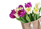 Bouquet from yellow and purple tulips in a paper package — Stock Photo