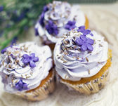 Cupcakes with lavender — Stock Photo