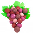 Stock Photo: Detail on red wine grapes maturation with green leaves