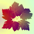 Colorful wine leaves card vector background - 图库矢量图片