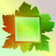 Five colored square frame and wine leaves card vector - 图库矢量图片