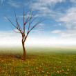 Tree without leaves with autumn landscape mist illustration — Photo #13936130