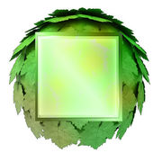 Isolated green maple treetop square icon template concept illustration — Stock Photo