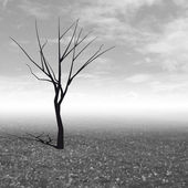 Tree without leaves in autumn black and white mist illustration — Stock Photo