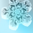 Abstract pentagonal winter snowflake star vector template — Stock Vector