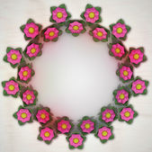 Double blossom red circle frame on metallic background — Stock Photo