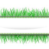 Grass outer green stripe frame vector — Stock Vector