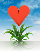 Blooming heart of love flower with sky — Stock Photo