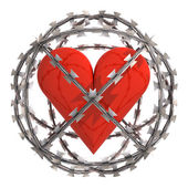 Geïsoleerde hart op prikkeldraad gebied — Stockfoto