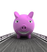 Isolated highway with pig front — Stock Photo