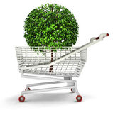 Bought tree in shopping cart isolated — Stock Photo