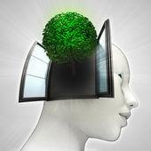 Groene boom die afkomstig is uit of in menselijk hoofd via venster ecologische concept — Stockfoto