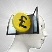Pond munt investeringen afkomstig is uit of in menselijk hoofd via venster concept — Stockfoto