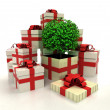 Isolated group of christmas gift boxes with leafy tree revelation — Photo