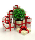Isolated group of christmas gift boxes with leafy tree revelation — Stock Photo