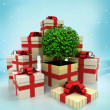 Christmas gift boxes with leafy tree miracle at winter snowfall — Stock Photo