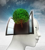 Groene boom die afkomstig is uit of in menselijk hoofd met hemelachtergrond — Stockfoto