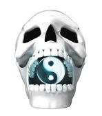 人間の頭蓋骨の頭 — ストック写真