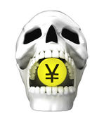 Human skull — Stock Photo